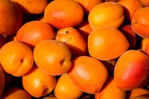 Miejskie targi – źródło zdrowej żywności